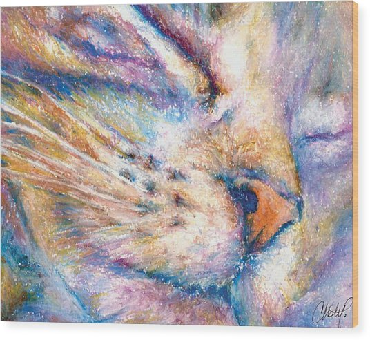 Sleeper Kitty Wood Print
