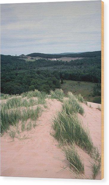 Sleeping Bear Dunes Wood Print