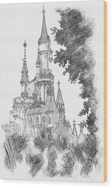 Sleeping Beauty Castle Wood Print