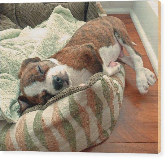 Sleepy Puppy Wood Print