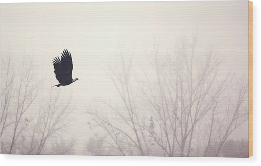 Slicing Through The Fog Wood Print