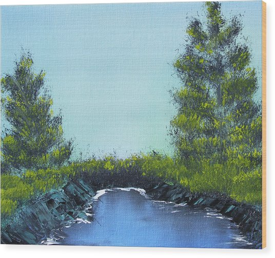 Slickrock Pond Wood Print
