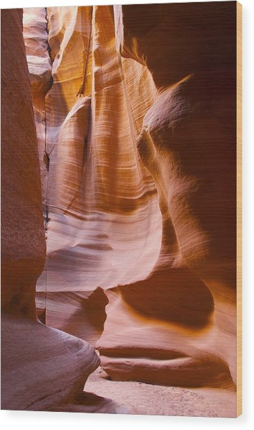 Slot Canyon 3 Wood Print by T C Brown