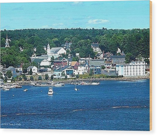 Small Coastal Town America Wood Print