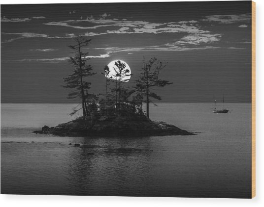 Small Island At Sunset In Black And White Wood Print