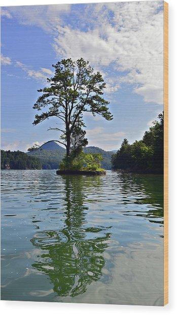 Small Island Wood Print