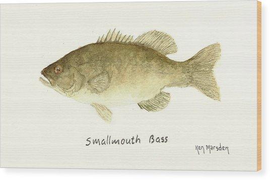 Smallmouth Bass Wood Print