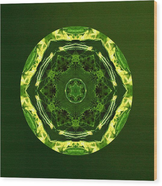 Smilabis Wood Print