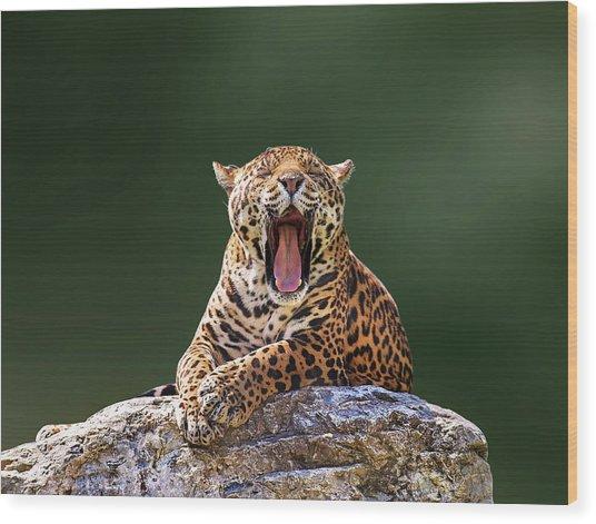 Smile Wood Print by Photo By Ivan Vukelic