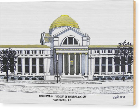 Smithsonian Museum Of Natural History Wood Print