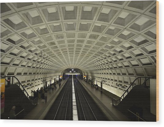 Smithsonian Station Wood Print