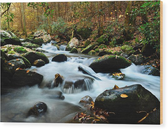 Smokey Mountain Creek Wood Print