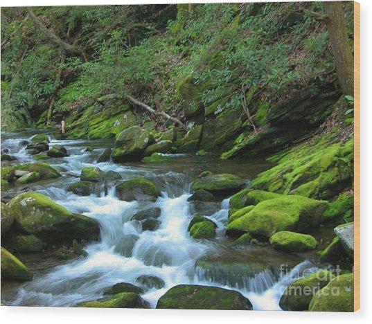 Smokey Mountain Spring Wood Print by Don F  Bradford