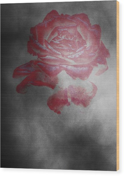 Smokey Rose Wood Print