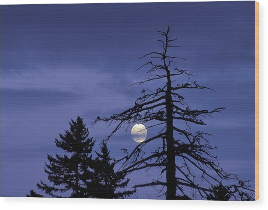 Smoky Moon Wood Print