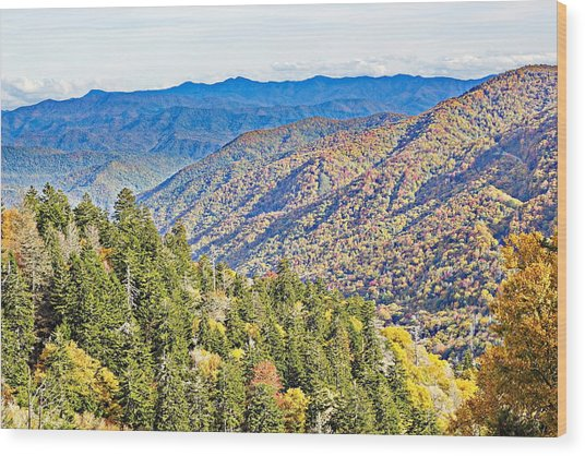 Smoky Mountain Autumn Vista Wood Print