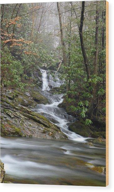 Smoky Mountain Beauty Wood Print