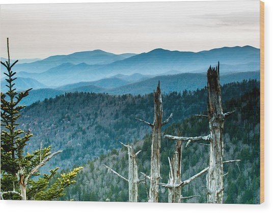 Smoky Mountain Overlook Wood Print