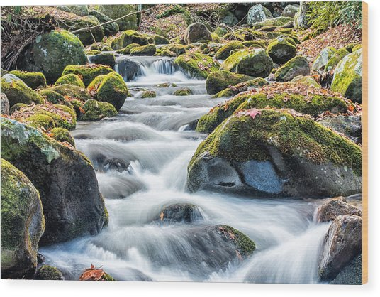 Smoky Mountain Rapids Wood Print