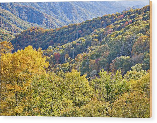 Smoky Mountain Valley Wood Print