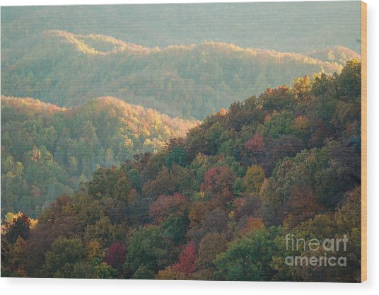 Smoky Mountain View Wood Print