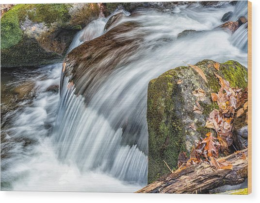 Smoky Mountain Stream 5 Wood Print