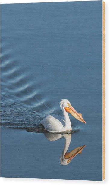 Lake Cruiser Wood Print