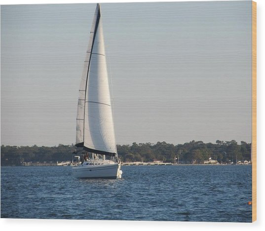 Smooth Sailing Carolina Wood Print