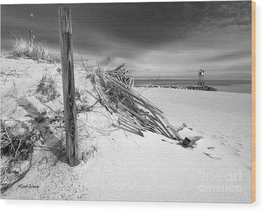Smugglers Beach Wood Print