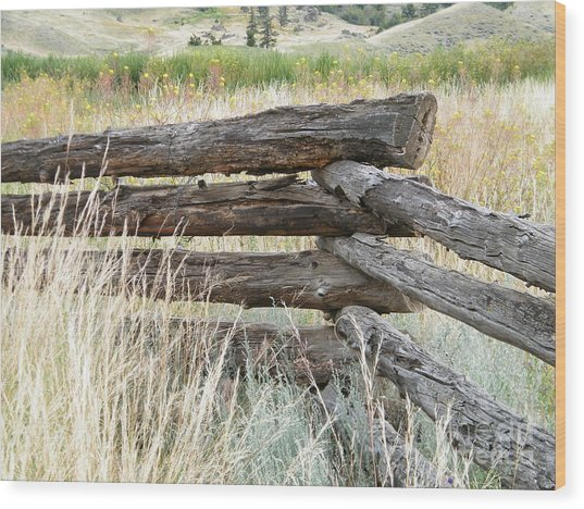 Wood Print featuring the photograph Snake Fence And Sage Brush by Ann E Robson