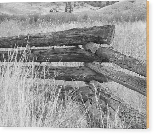 Wood Print featuring the photograph Snake Fence  by Ann E Robson