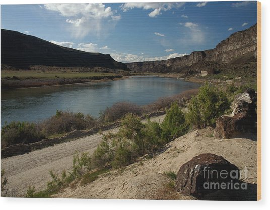 715p Snake River Birds Of Prey Area Wood Print