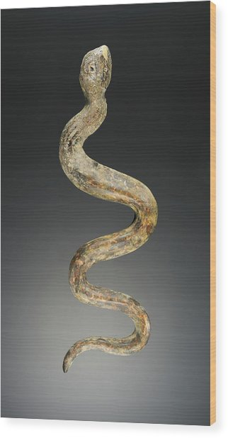 Snake Unknown Acquired In Beirut, Lebanon Wood Print