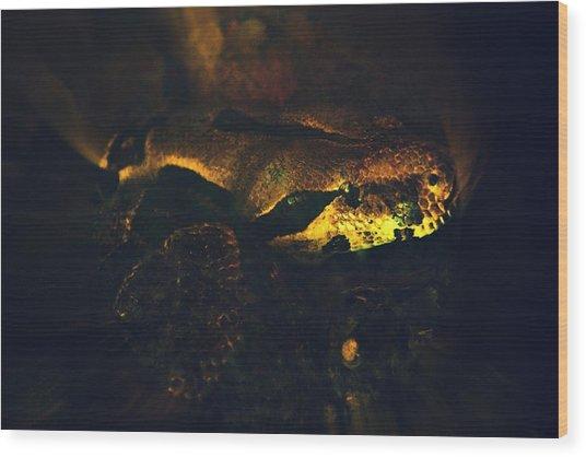 Snake Wood Print by Valarie Davis