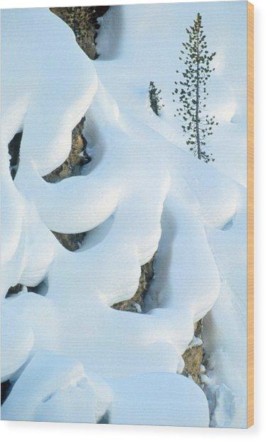 Snow And Tree Wood Print