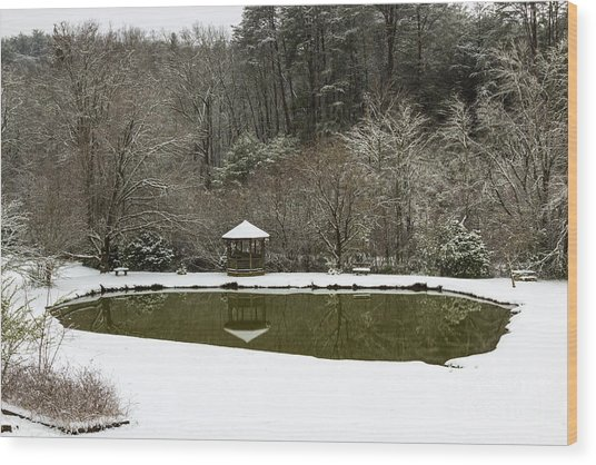 Snow At The Pond Wood Print