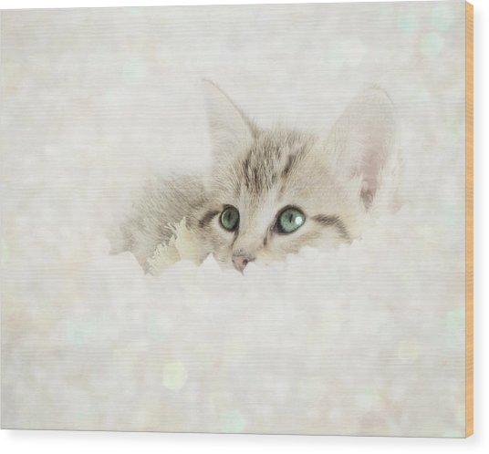 Snow Baby Wood Print