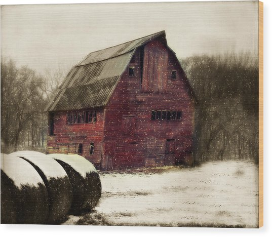 Snow Bales Wood Print