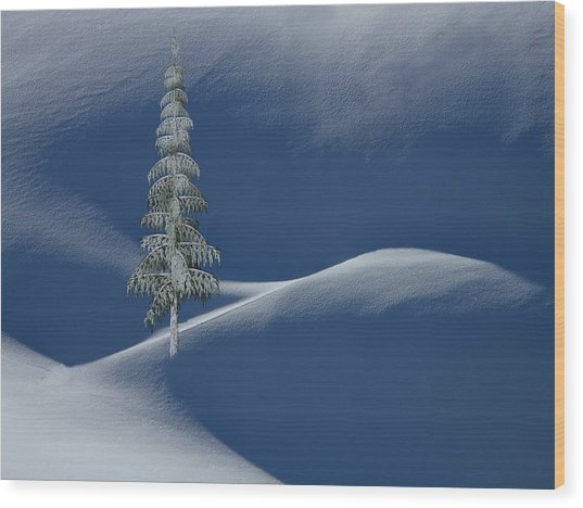 Snow Covered Tree And Mountains Color Wood Print