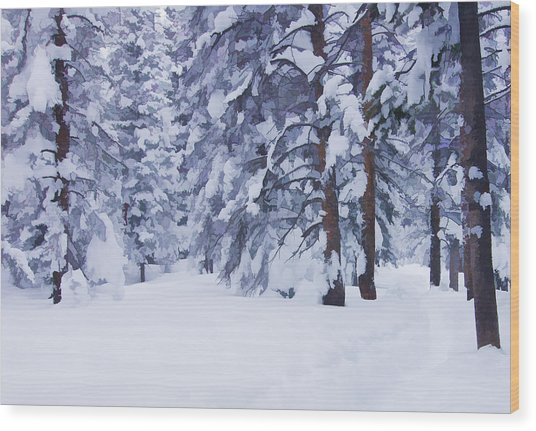 Snow-dappled Woods Wood Print