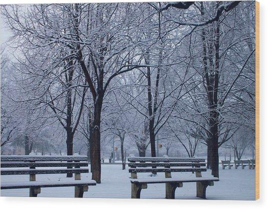 Snow Day Wood Print by Richie Stewart