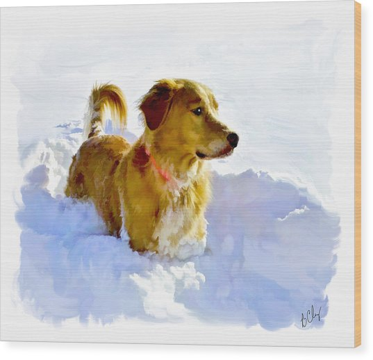 Snow Dog Wood Print