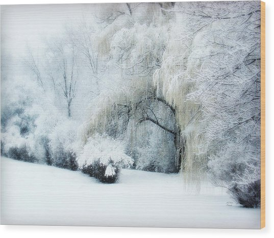 Snow Dream Wood Print
