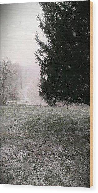 Snow Falling Wood Print by Nickaleen Neff