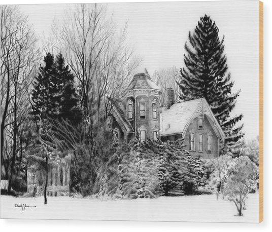 Da196 Snow House By Daniel Adams Wood Print