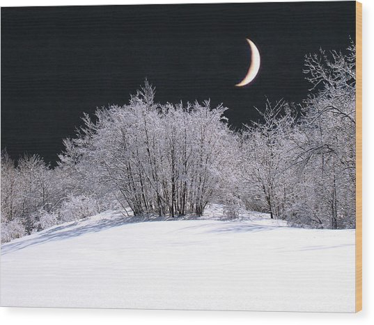 Snow In The Moonlight Wood Print by Giorgio Darrigo