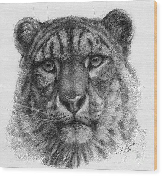 Snow Leopard - Panthera Uncia Portrait Wood Print by Svetlana Ledneva-Schukina