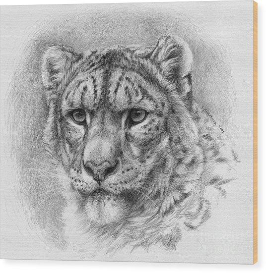 Snow Leopard - Panthera Uncia Wood Print by Svetlana Ledneva-Schukina