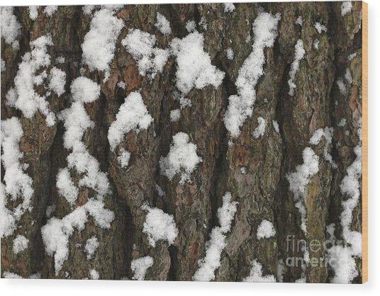 Snow On Pine Bark Wood Print