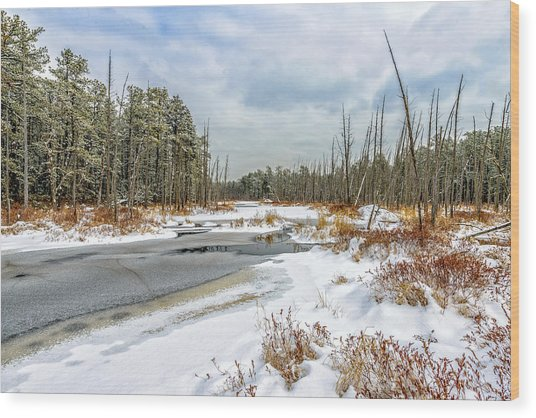 Snow On Roberts Branch Wood Print